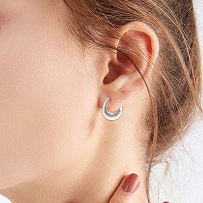 Huggie Hoop Earrings Sterling Silver Earrings Jewelry Gifts